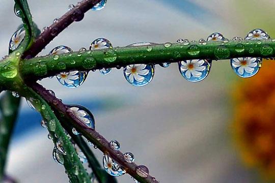 water memory