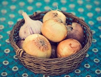 garlic in soup