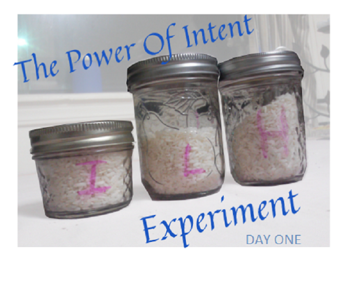 Power of Intent rice experiment